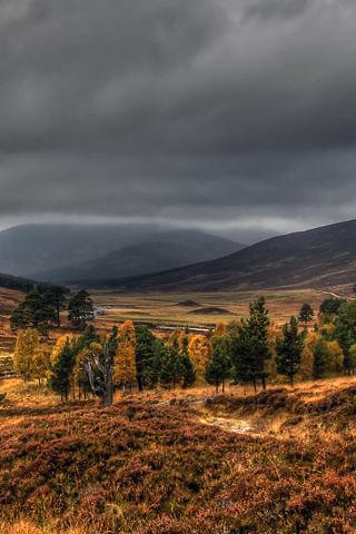 Natural Cairngorms Of Scotland
