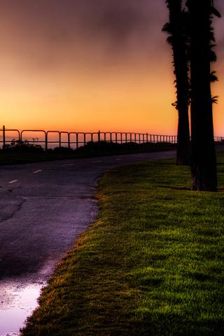 Beach Beach Path