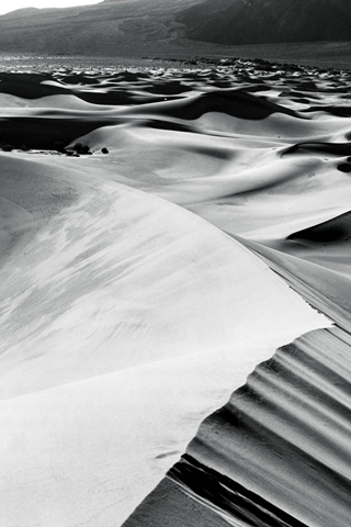 Desert Sand Dunes In Black And White Shadow