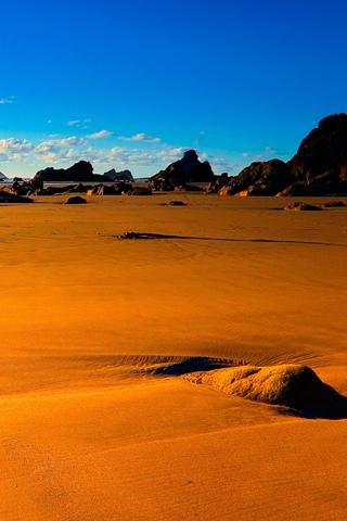 Desert Sandy Landscape
