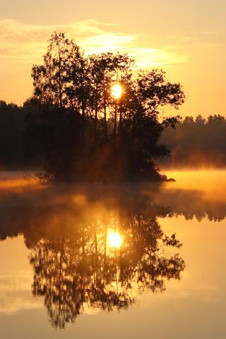 Lakes And Ponds Alljungen Sweden