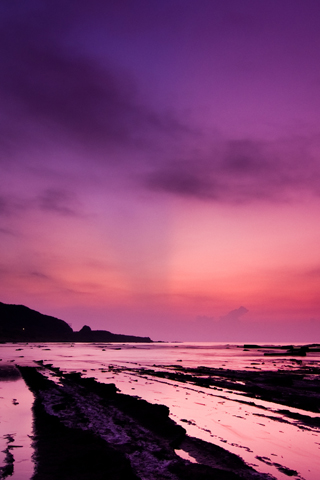 Phenomenon Purple Night Coast