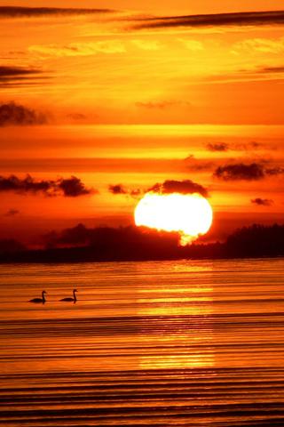 Sunrise Comox Sunrise