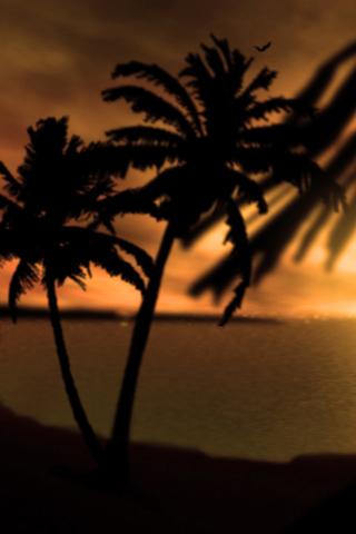 Sunset Fijian Sunset