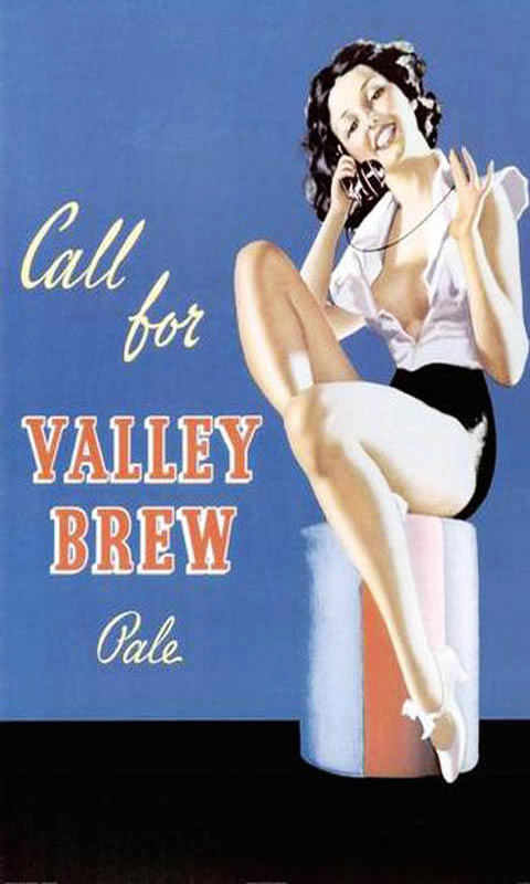 Alcohol Valley Brew