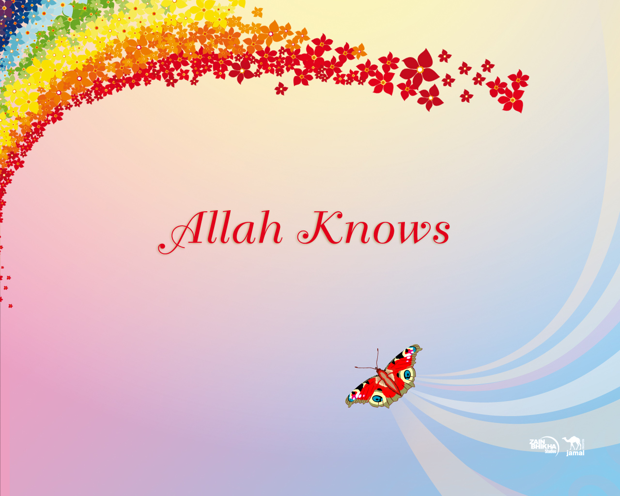 Allah Knows II by Hishmah